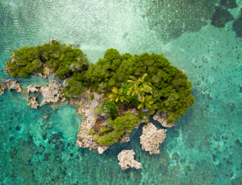This is what 5 of the world's most famous people would take to a deserted island